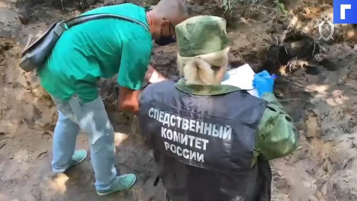 Массовое захоронение жертв нацистов нашли под Псковом