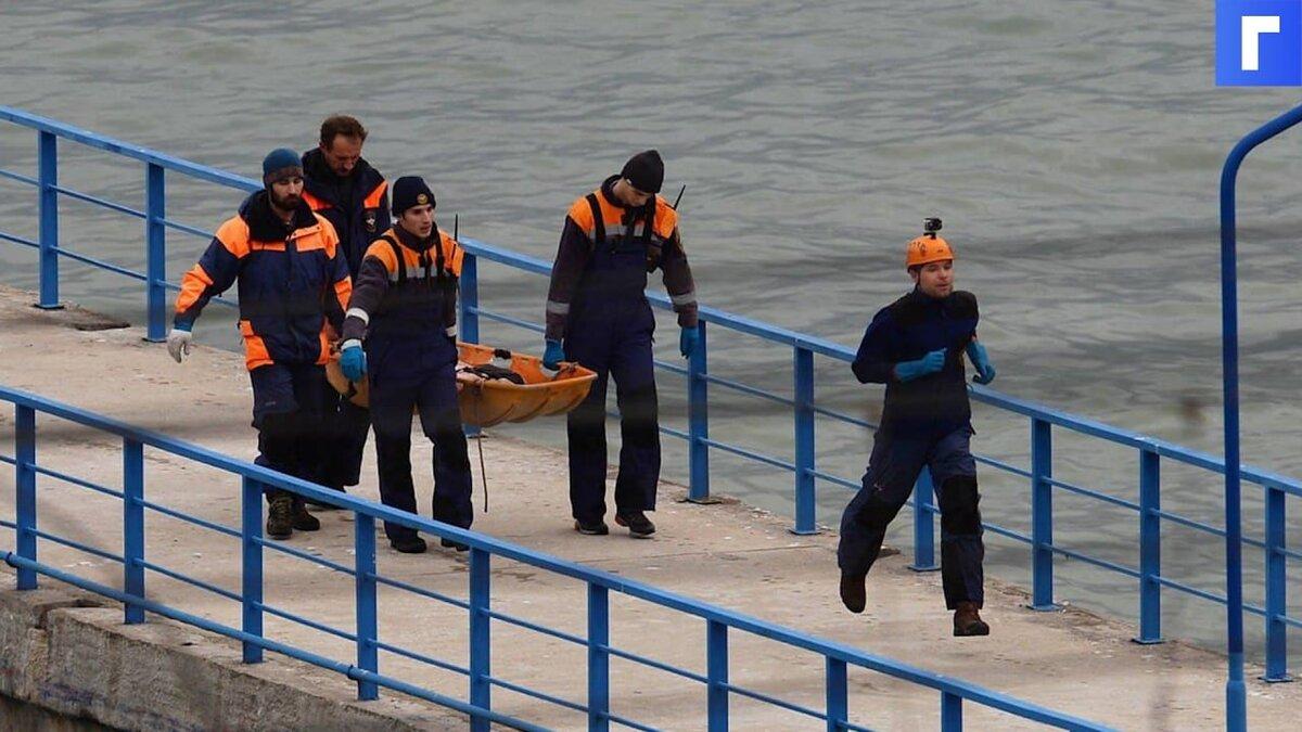 Родные погибших в крушении Ту-154 под Сочи просят ЕСПЧ о справедливом разбирательстве