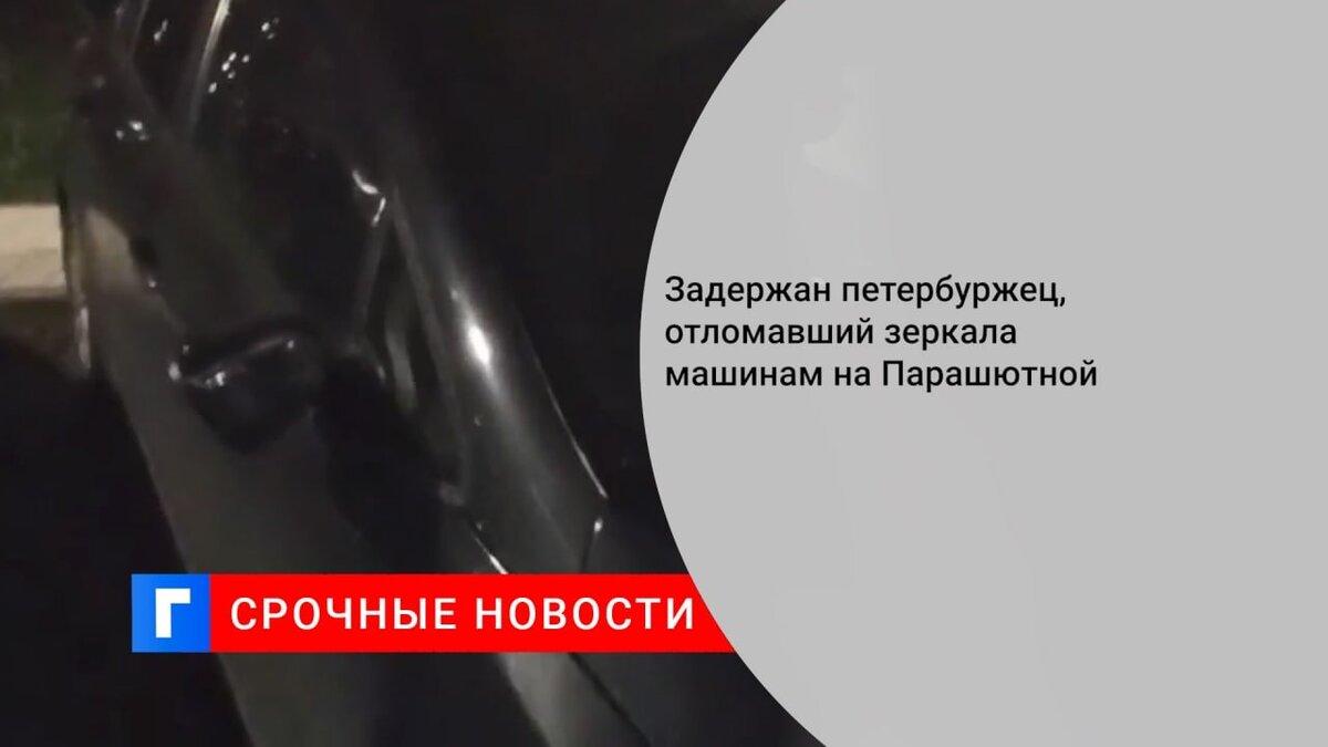 Задержан петербуржец, отломавший зеркала машинам на Парашютной