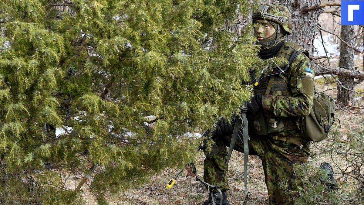 В Эстонии начались военные учения «Весенний шторм» с НАТО