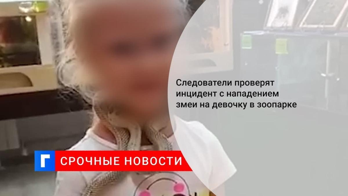 СК проверит сообщения об укушенной девочке в контактном зоопарке в Екатеринбурге