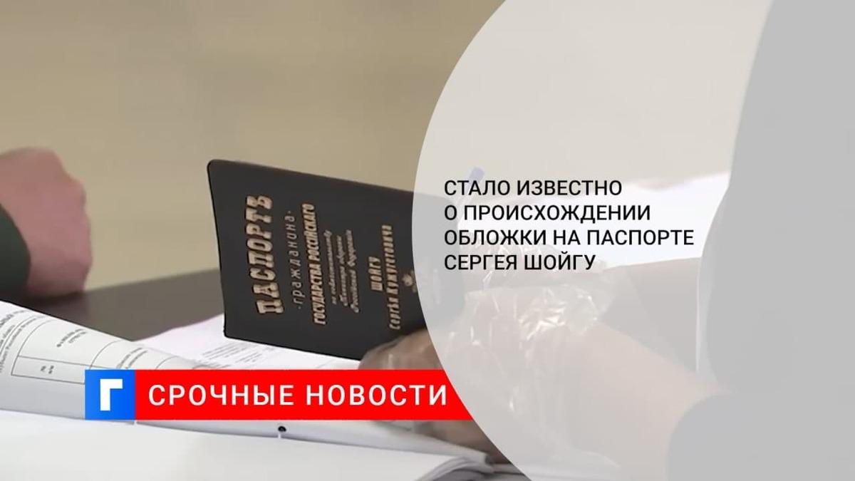 Шойгу на выборах показал паспорт с необычной обложкой