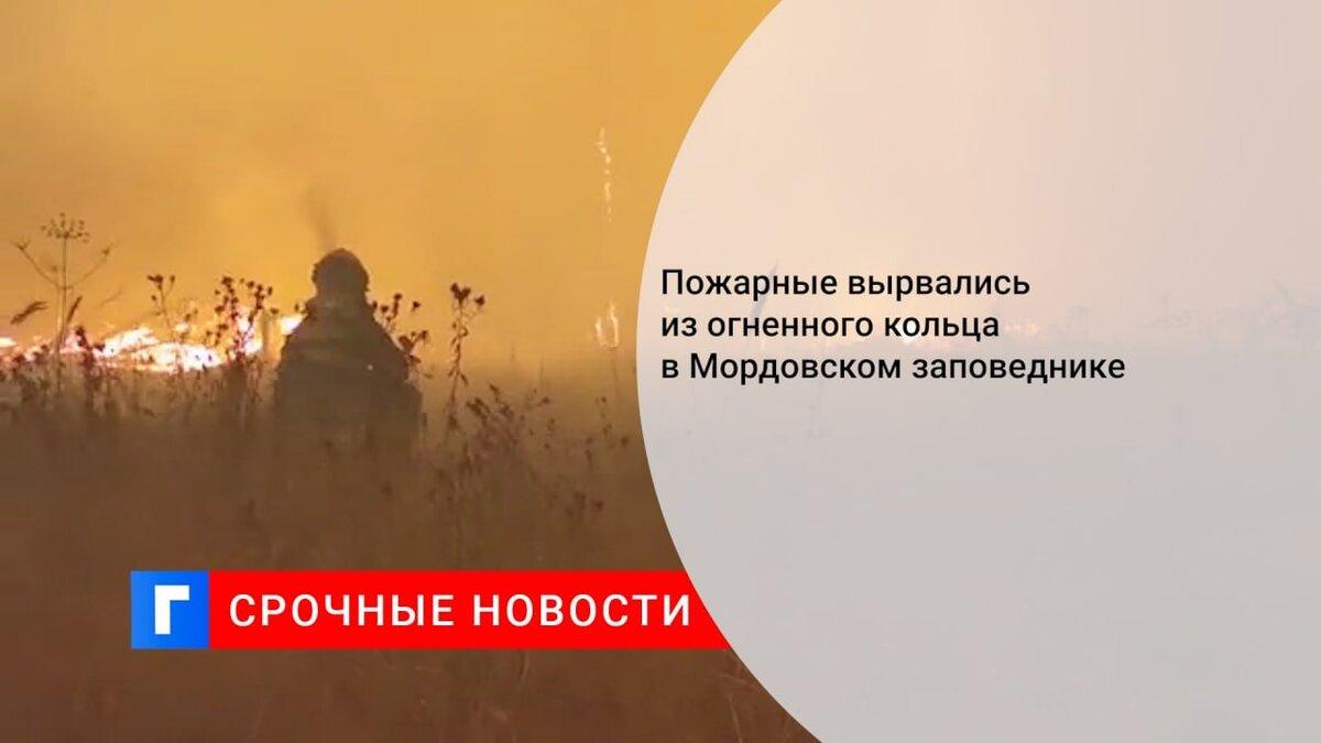 Пожарные вырвались из огненного кольца в Мордовском заповеднике