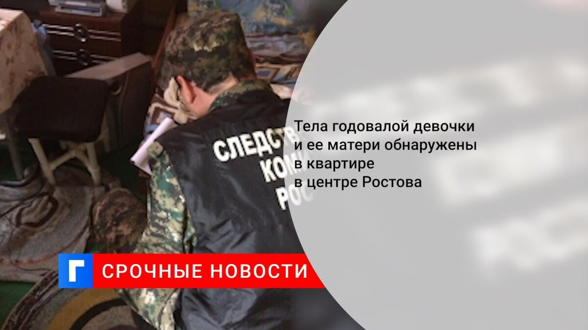 Тела годовалой девочки и ее матери обнаружены в квартире в центре Ростова