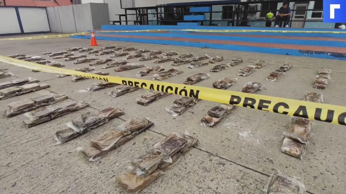 В Эквадоре обнаружили бананы с кокаином для России и Бельгии