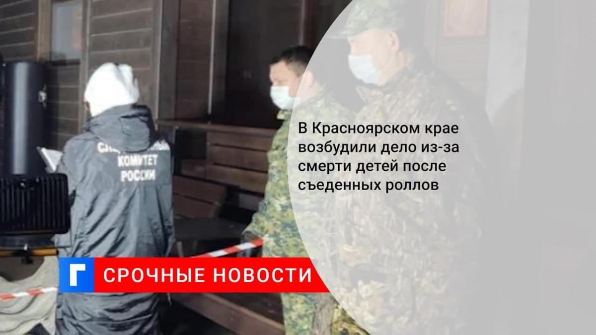 В Красноярском крае возбудили дело по факту гибели двух малолетних детей
