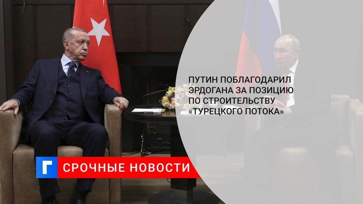 Путин поблагодарил Эрдогана за позицию по строительству «Турецкого потока»