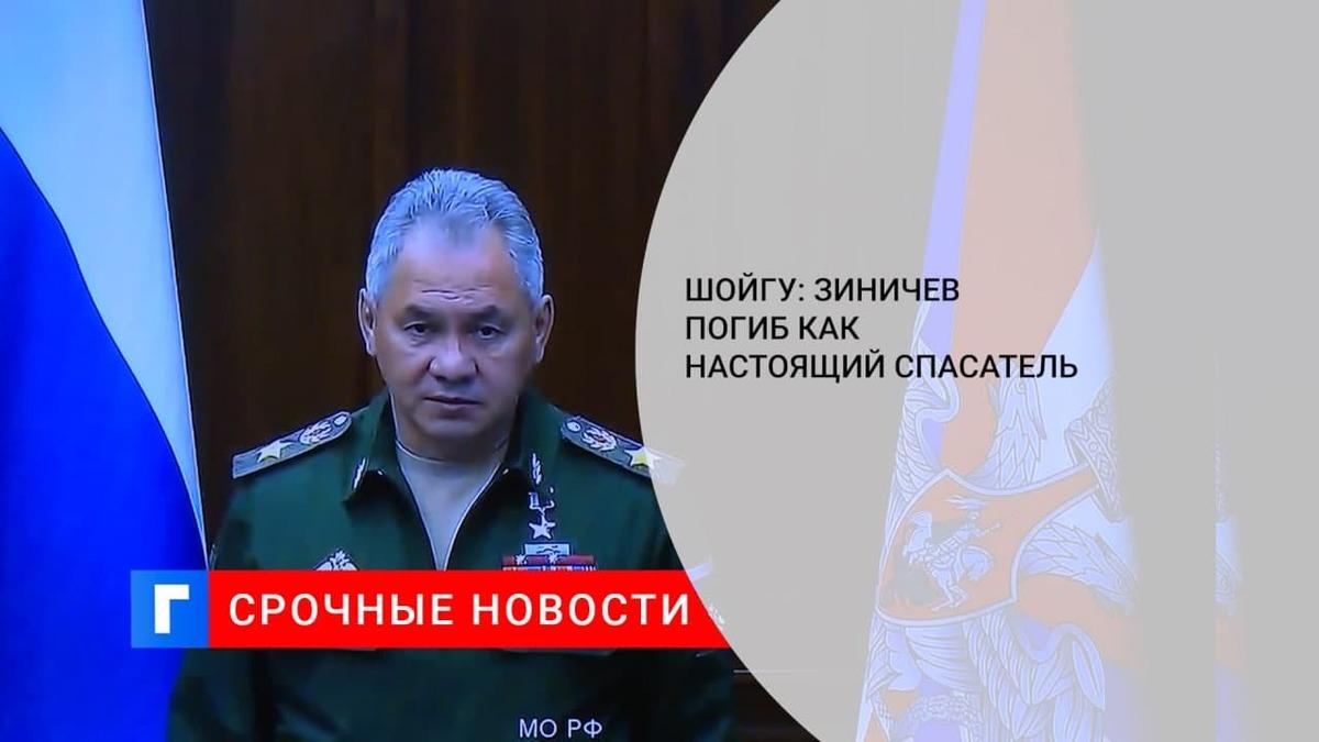 Шойгу заявил, что Зиничев погиб как настоящий спасатель