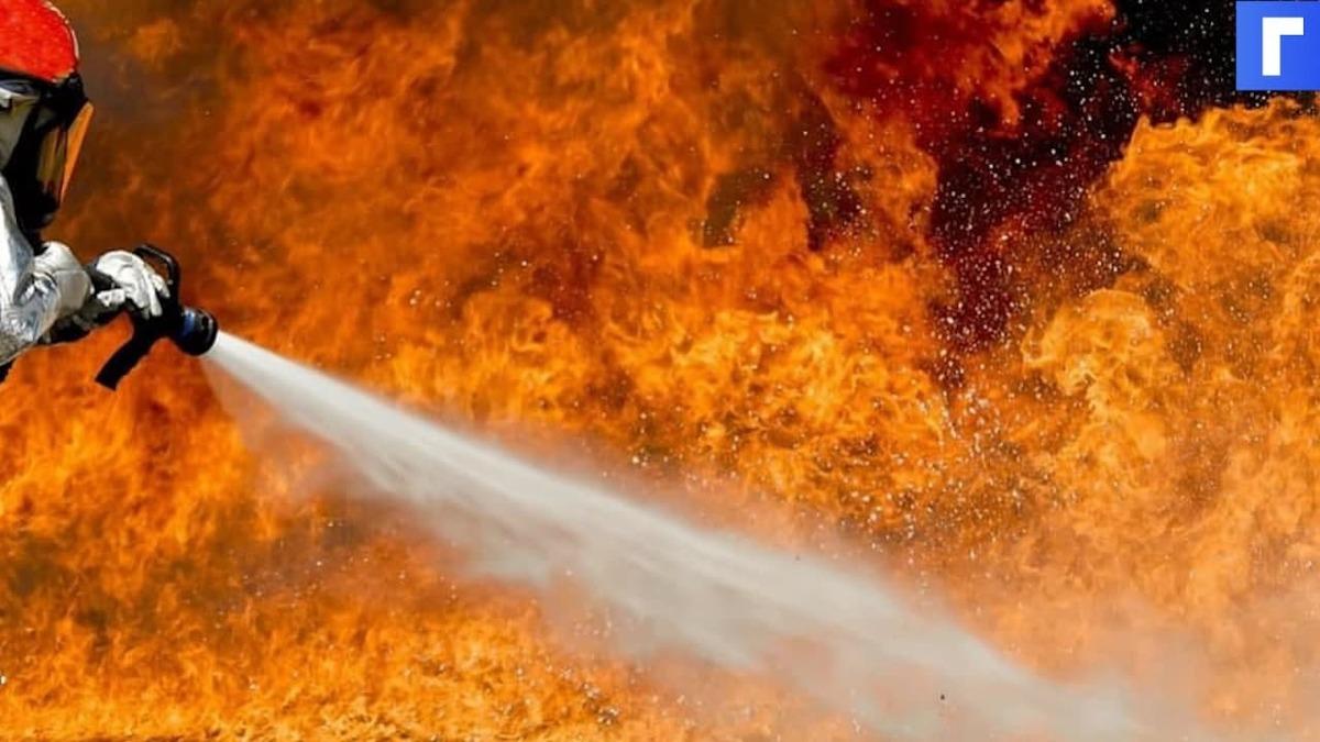 В Петербурге сгорел рейсовый автобус