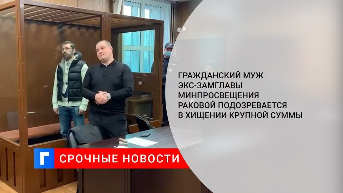 Гражданский муж экс-замглавы Минпросвещения Раковой подозревается в хищении крупной суммы