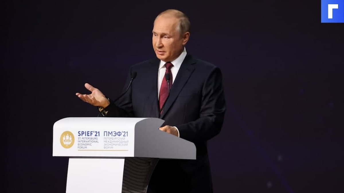 В Бундестаге с пониманием отнеслись к словам Путина, что РФ не обязана «кормить» Украину