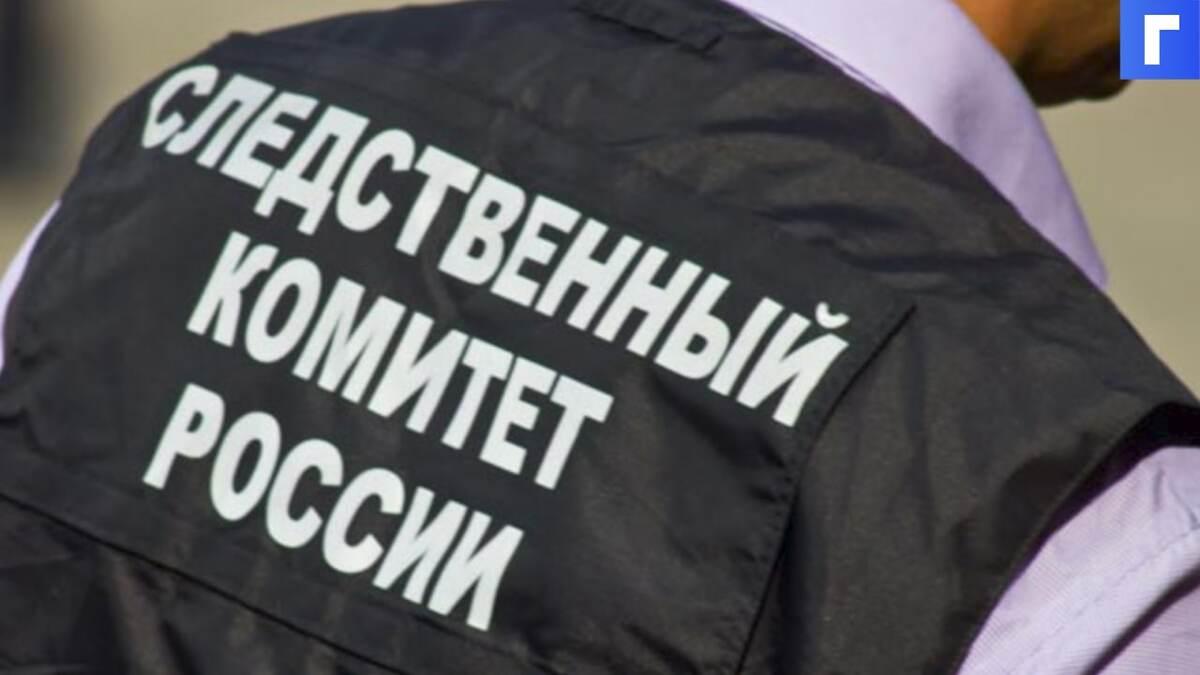 СК проводит обыск в офисе правозащитного объединения «Команда 29» в Петербурге