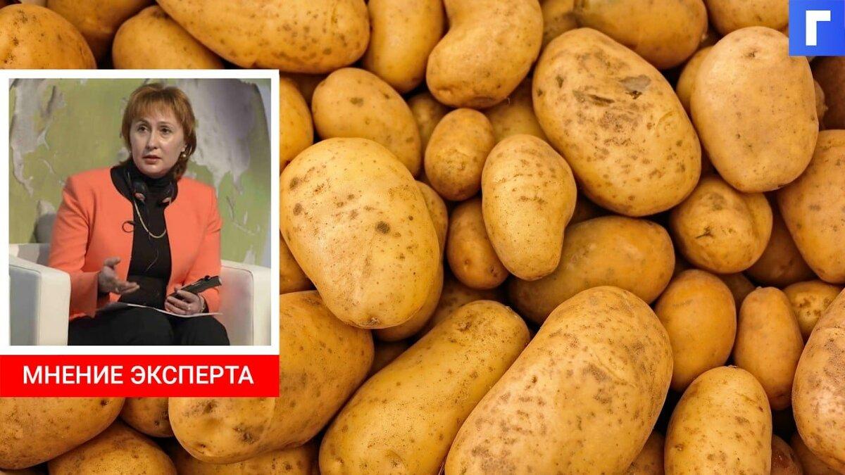 Производители картофеля калибруют продукцию под низкие цены
