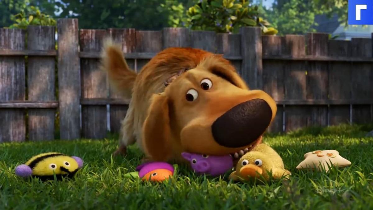Мультфильм «Вверх» получит продолжение про пса Дага
