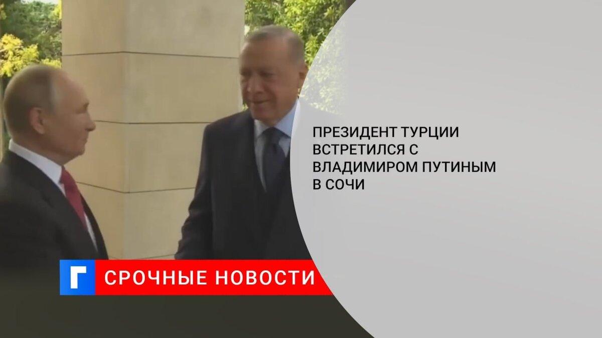 Президент Турции встретился с Владимиром Путиным в Сочи