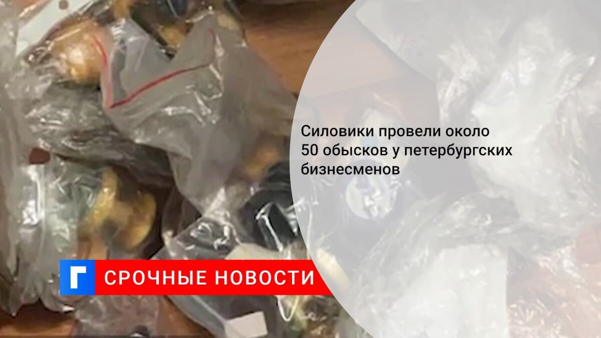 Силовики провели около 50 обысков у петербургских бизнесменов
