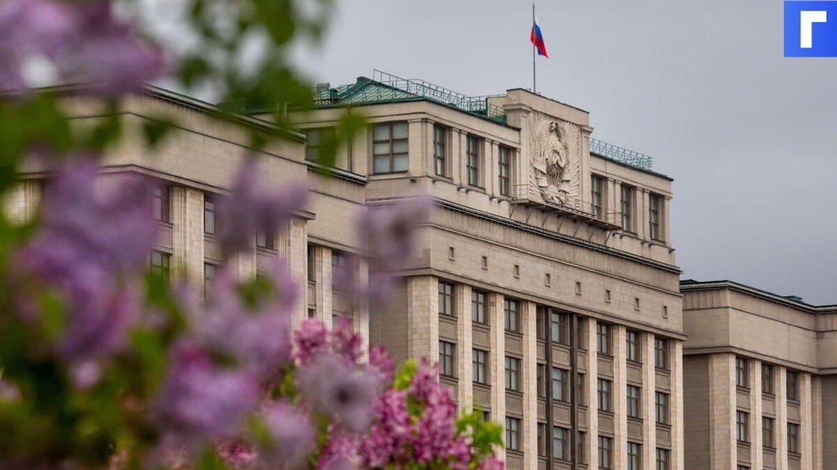 Госдума приняла поправки о мерах поддержки семей и беременных
