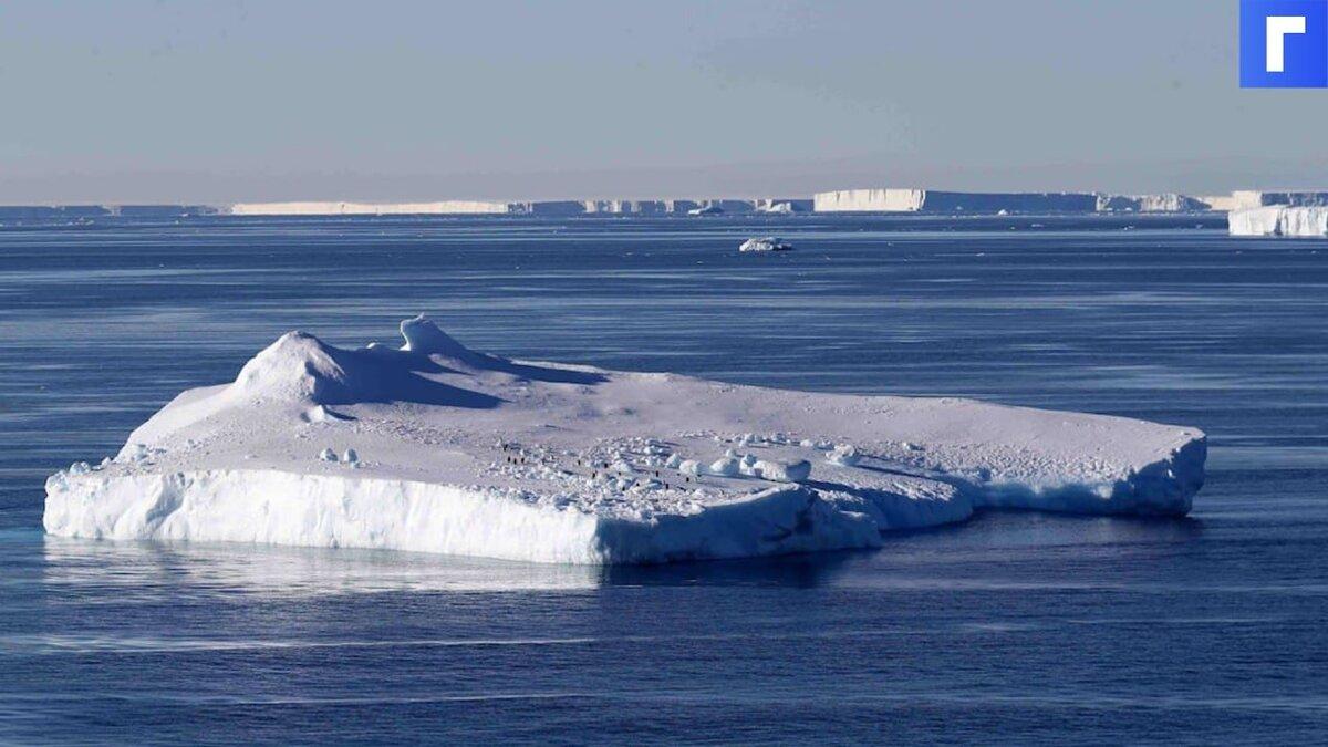 От Антарктиды откололся самый большой в мире айсберг