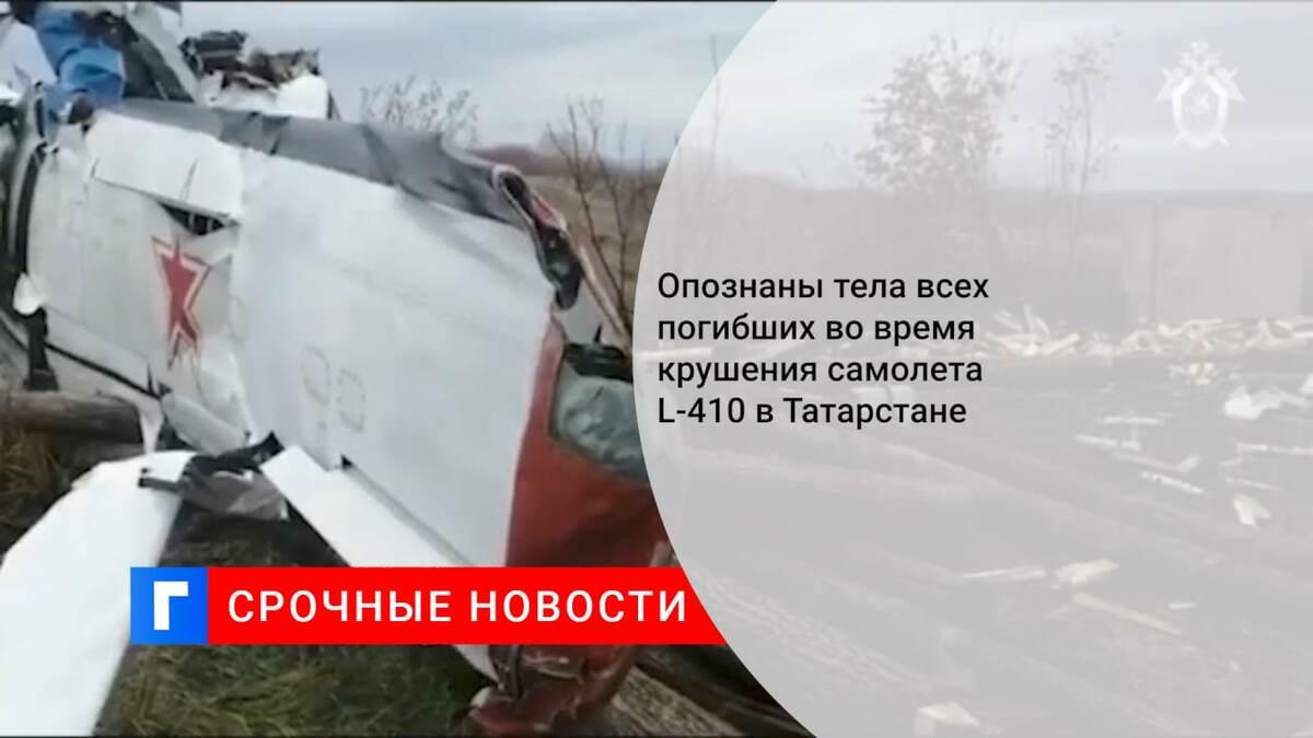 Опознаны тела всех погибших во время крушения самолета L-410 в Татарстане