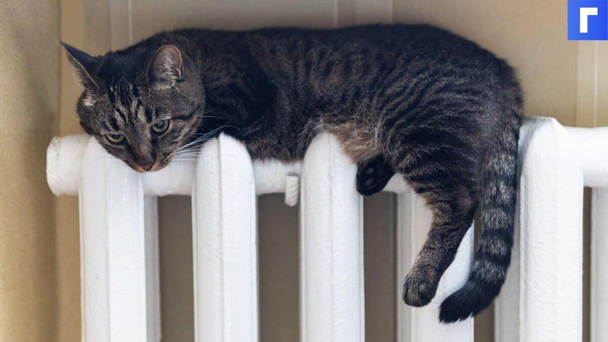 В России хотят ввести эталонные тарифы на тепло