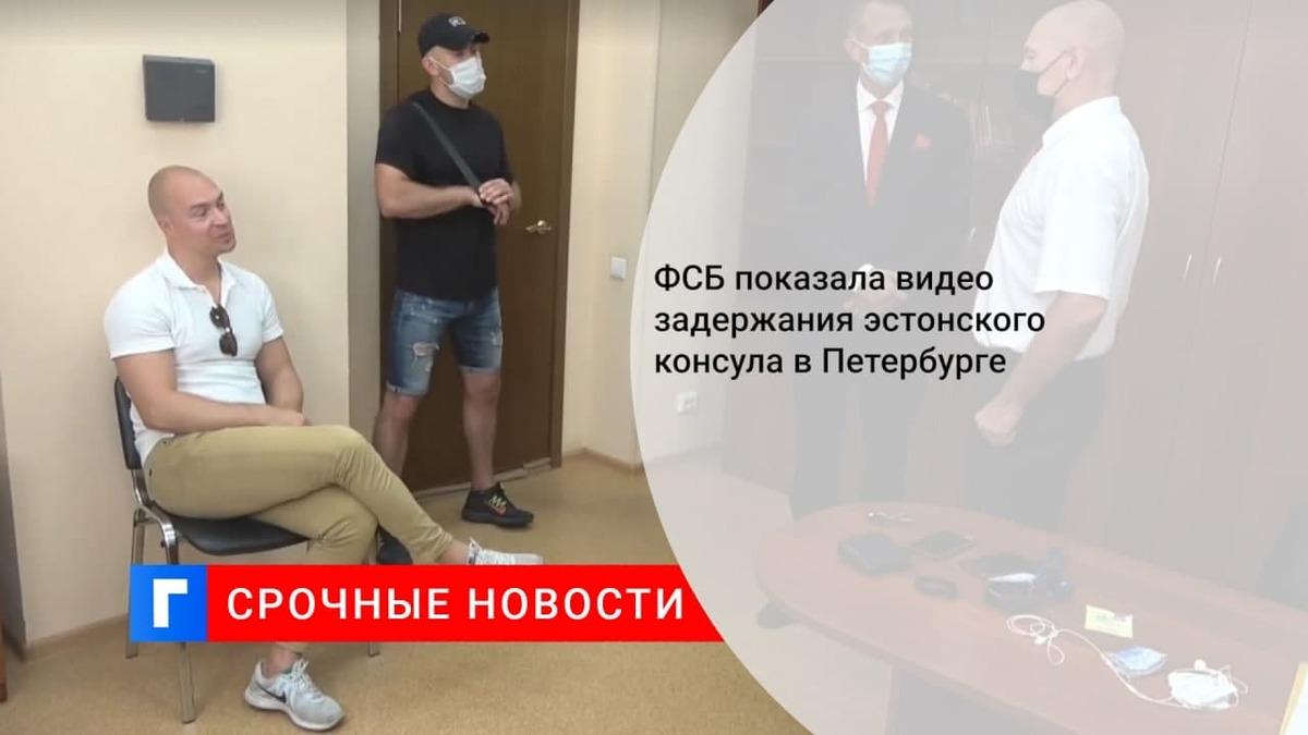 ФСБ опубликовала видео задержания эстонского консула в Петербурге