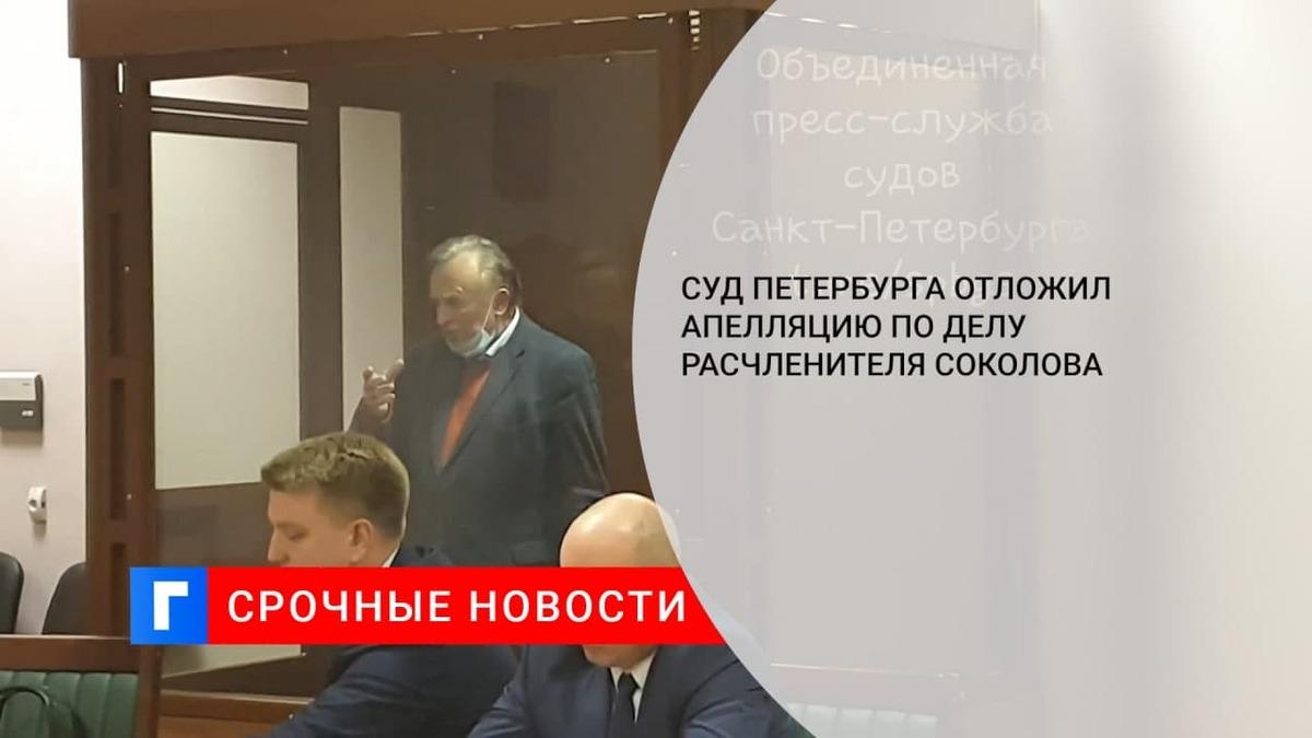 Суд в Петербурге отложил рассмотрение жалобы на приговор историку Соколову