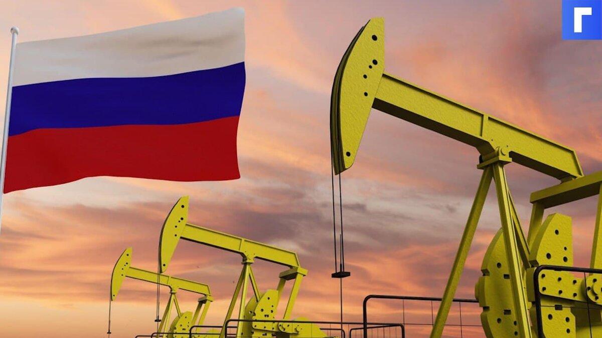 В Минприроды оценили обеспеченность России запасами нефти и газа