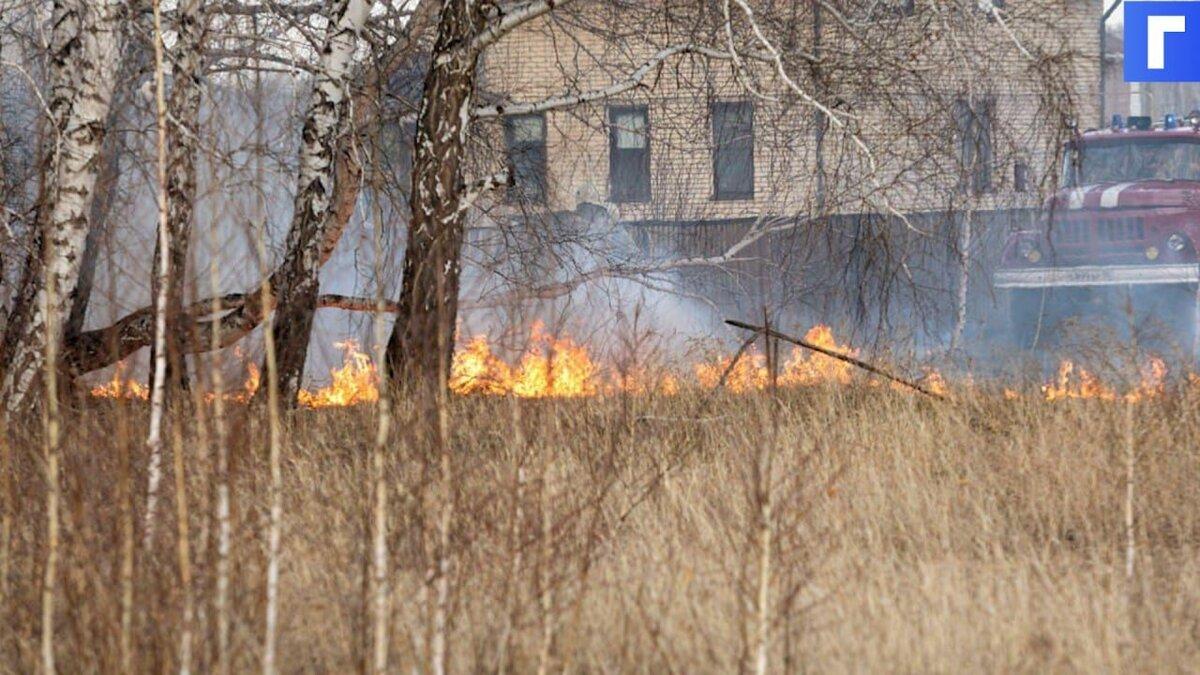 В Тюменской области из-за лесных пожаров начали гореть дачи