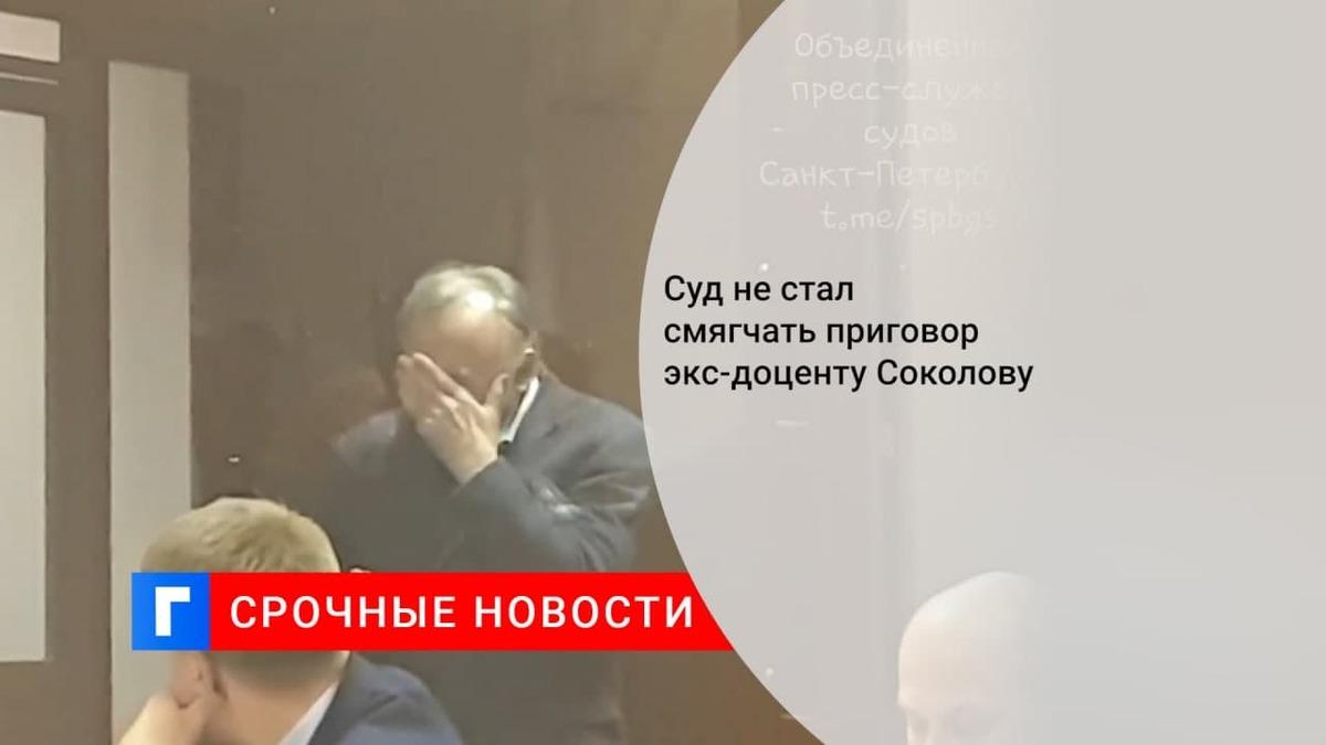 Суд отказался смягчить приговор убившему аспирантку историку Соколову