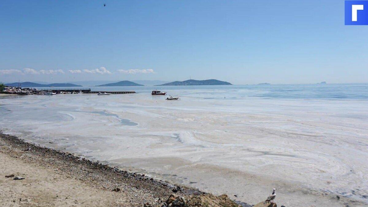 Турецкие власти обещают очистить Мраморное море от покрывшей его слизи из водорослей