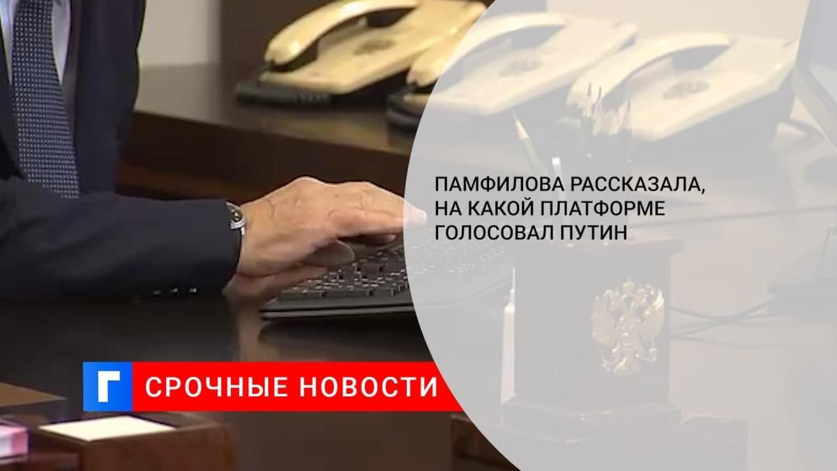 Памфилова заявила, что Путин проголосовал на выборах в Госдуму на портале mos.ru
