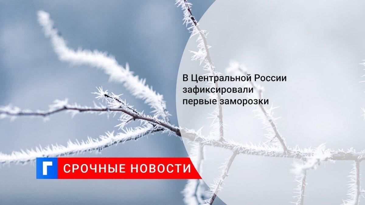 В Центральной России зафиксировали первые заморозки