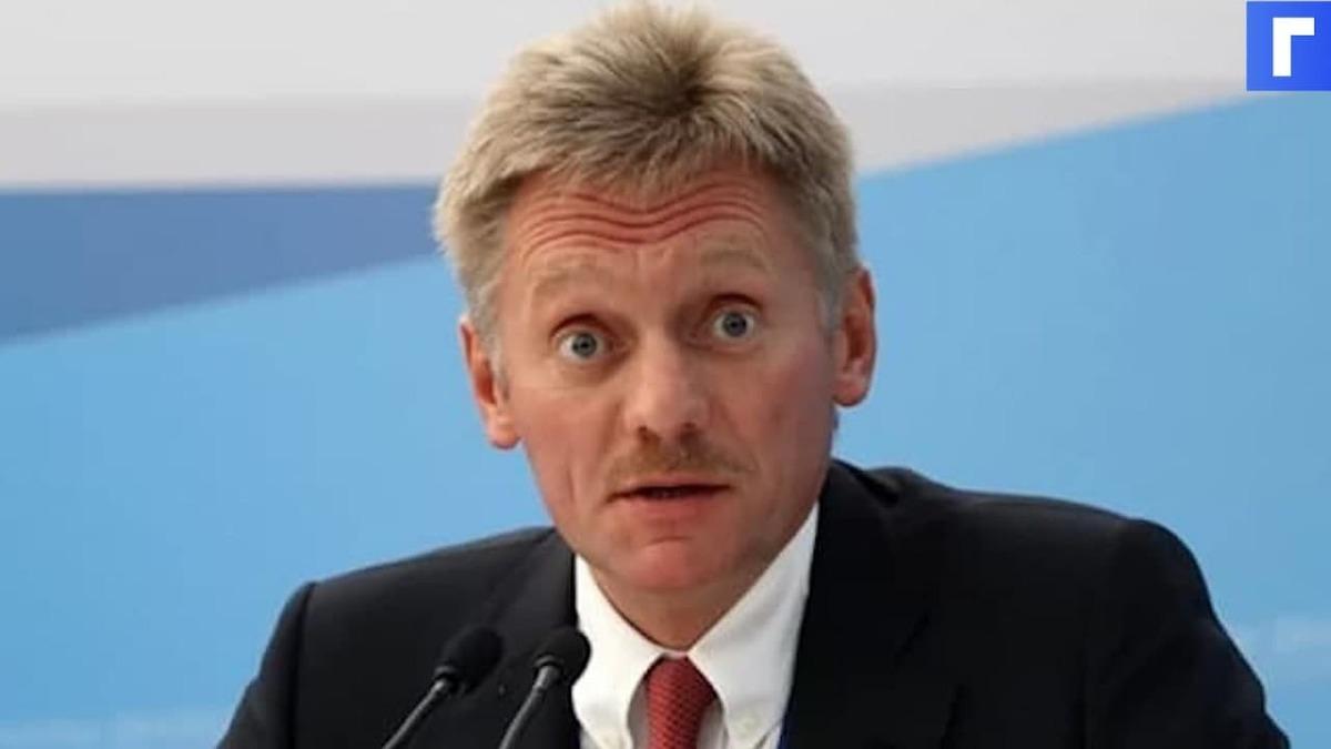 Кремль выразил сожаление в связи с ограничением доступа госкомпаний к Zoom