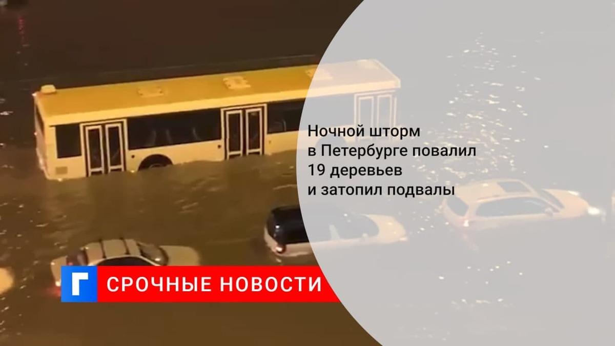 В Петербурге сильный ветер и ливни привели к подтоплениям и падениям деревьев