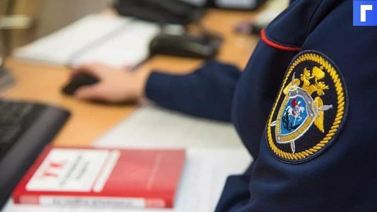 Глава СК считает приговор участнику митинга 31 января в Петербурге слишком лояльным