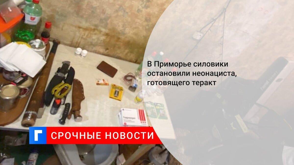 В Приморье силовики остановили неонациста, готовящего теракт