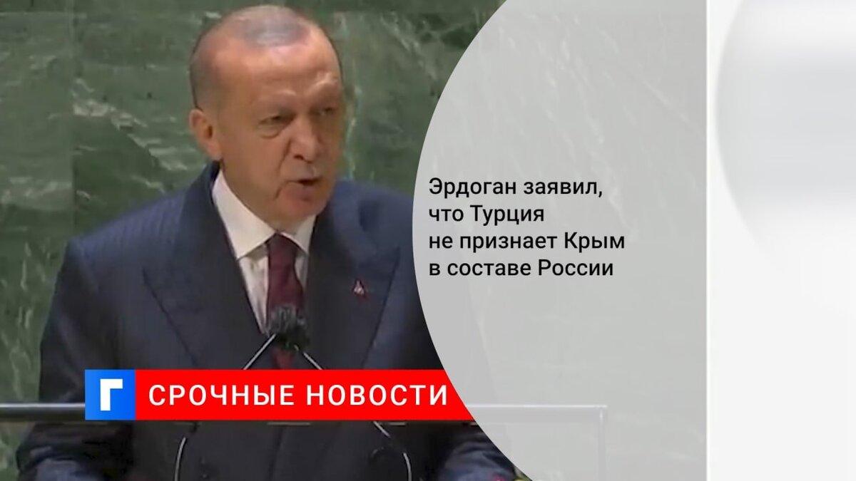 Эрдоган заявил, что Турция не признает Крым в составе России