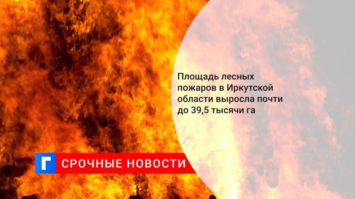 Площадь лесных пожаров в Иркутской области выросла почти до 39,5 тысячи га