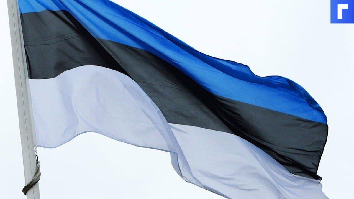 МИД Эстонии объяснил задержание консула в Петербурге «конфронтацией» России с Евросоюзом