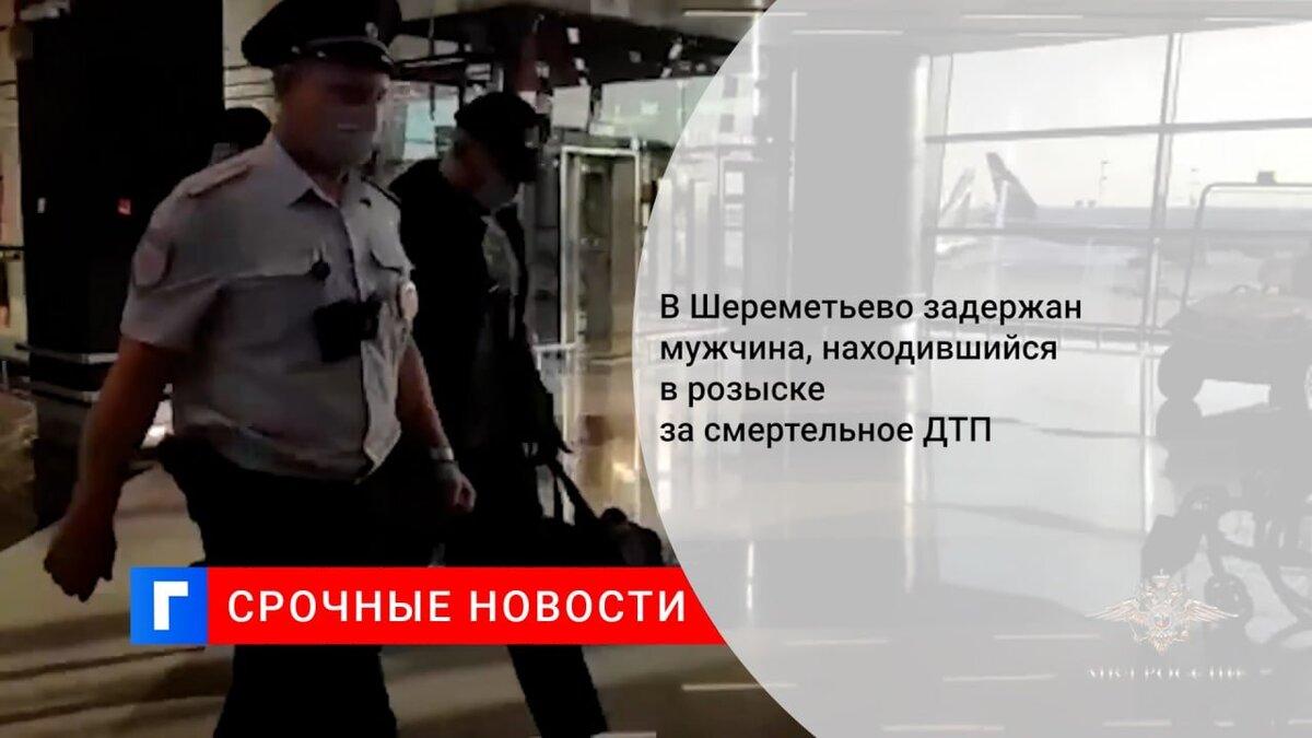 В Шереметьево задержали мужчину, находившегося в розыске за ДТП с четырьмя погибшими
