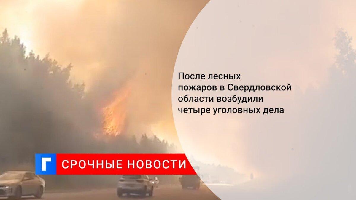 После лесных пожаров в Свердловской области возбудили четыре уголовных дела