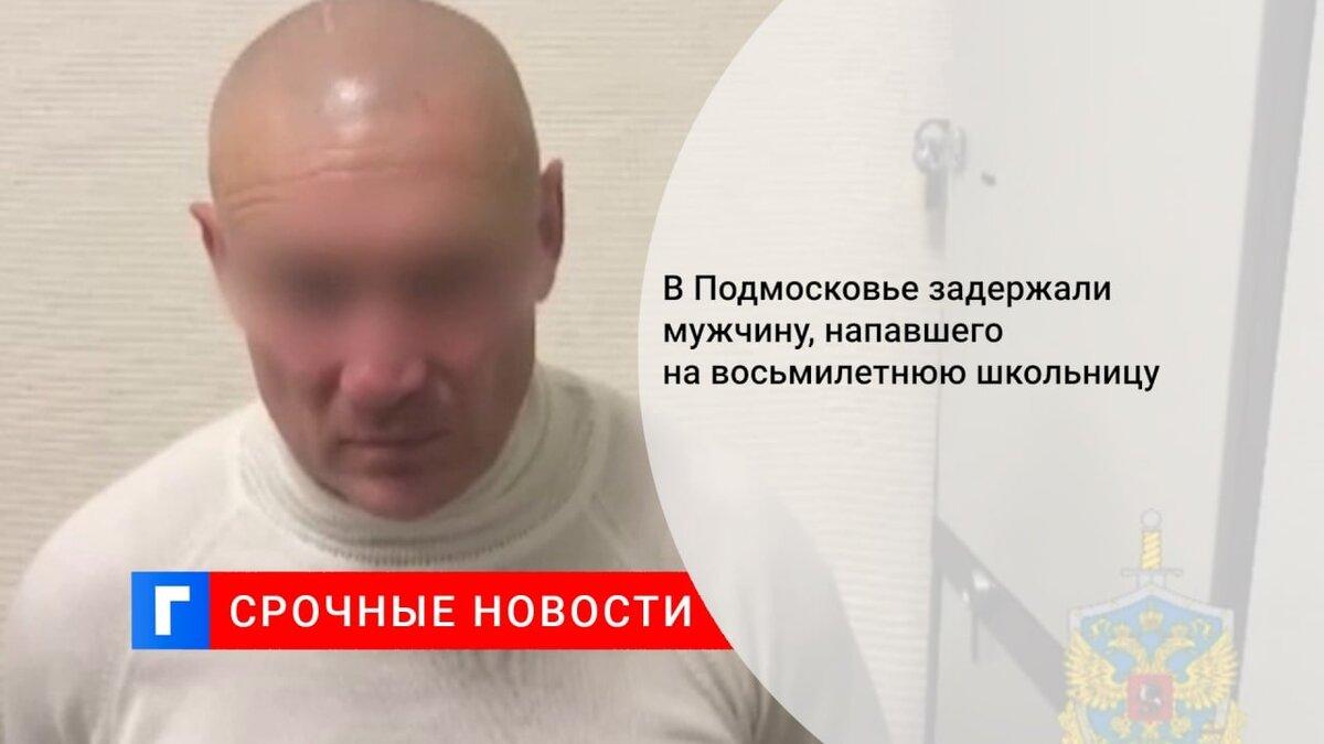 В Подмосковье задержали мужчину, напавшего на восьмилетнюю школьницу