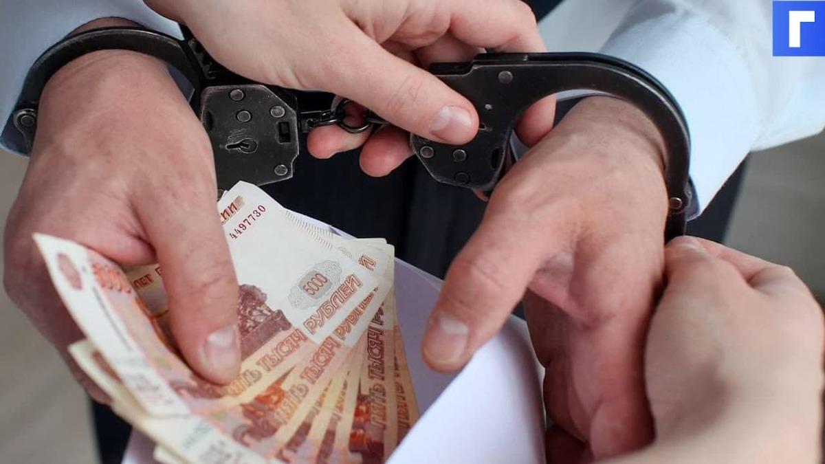 В Петербурге суд заключил под стражу главу муниципалитета Ленобласти