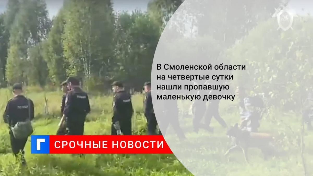Пропавшая в Смоленской области годовалая девочка найдена живой