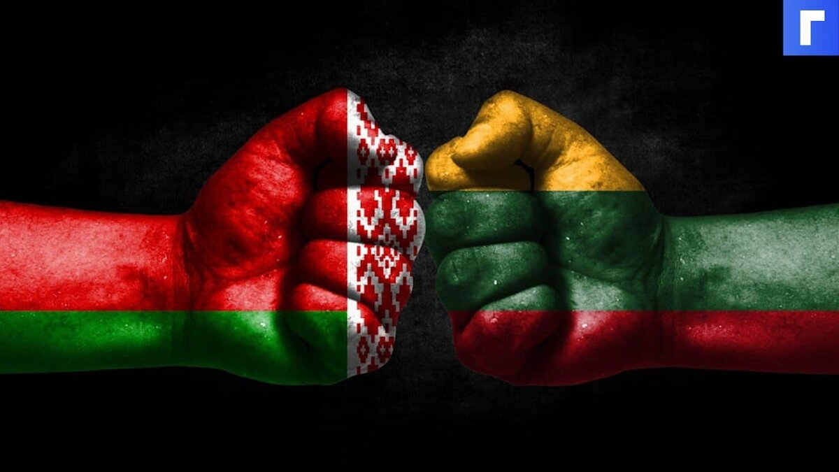 Премьер Литвы заявила, что Вильнюс начнет строительство стены на границе с Белоруссией