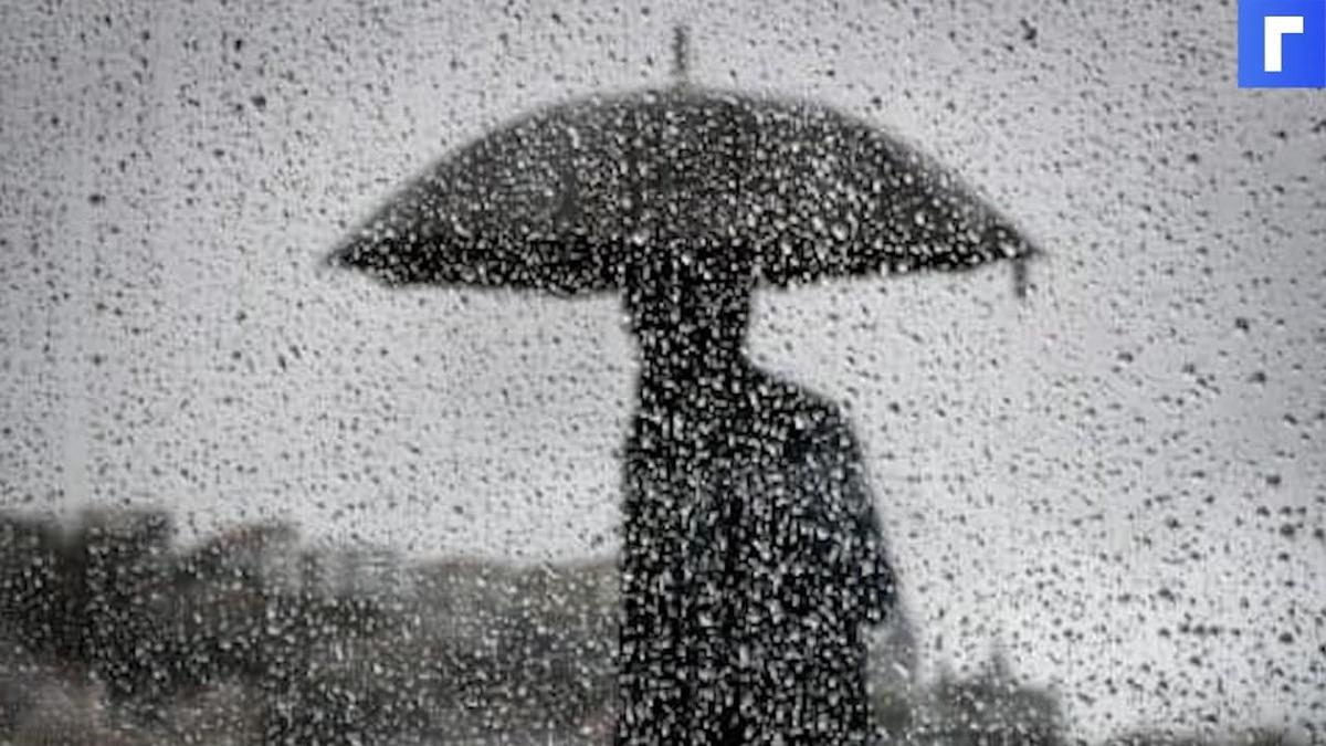 В понедельник в Петербурге ожидаются грозовые дожди и похолодание