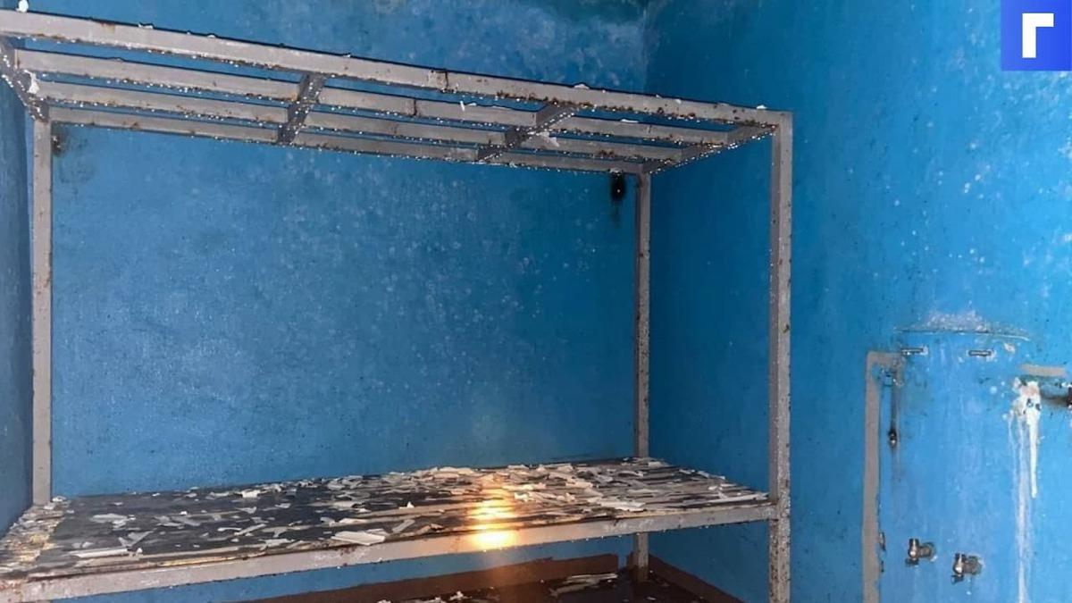СМИ: в Ленинградской области обнаружили подземную тюрьму с крематорием