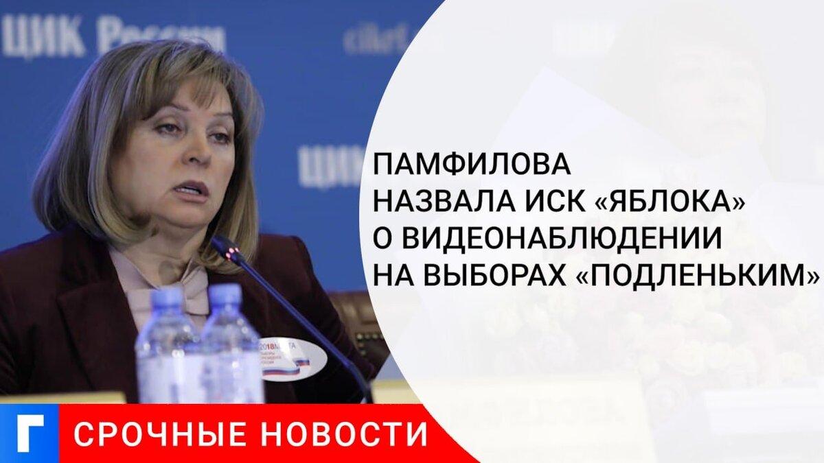 Памфилова назвала иск «Яблока» о видеонаблюдении на выборах «подленьким»