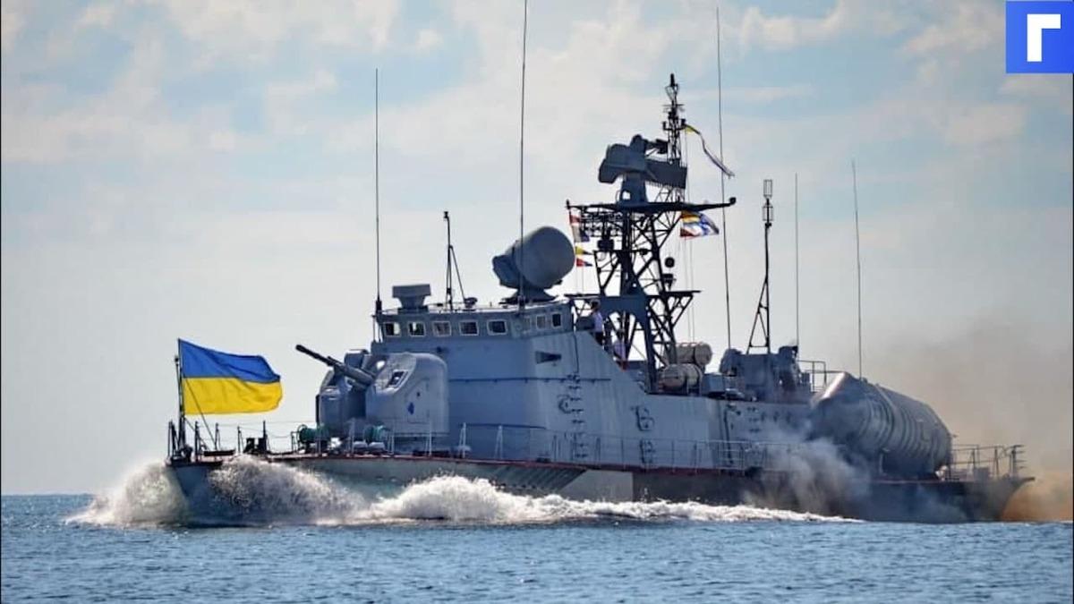 Корабль ВМФ РФ заставил отступить украинский катер с американскими журналистами
